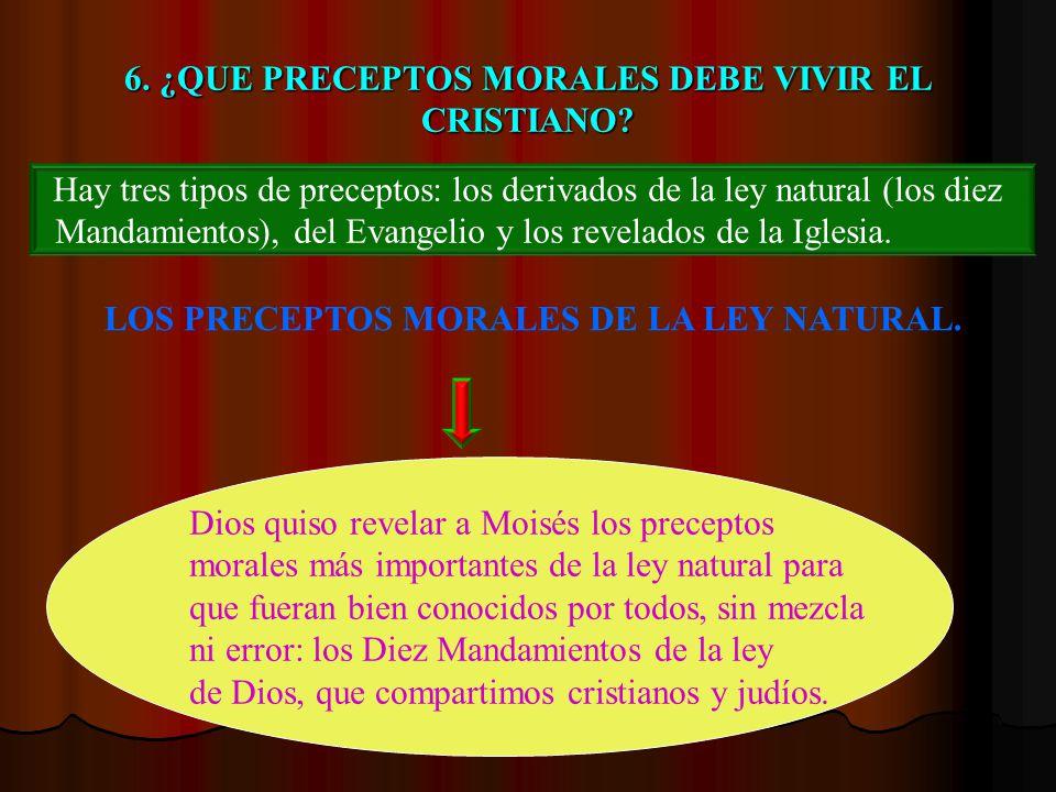 6. ¿QUE PRECEPTOS MORALES DEBE VIVIR EL CRISTIANO