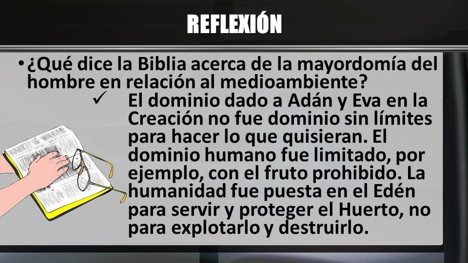 REFLEXIÓN ¿Qué dice la Biblia acerca de la mayordomía del hombre en relación al medioambiente