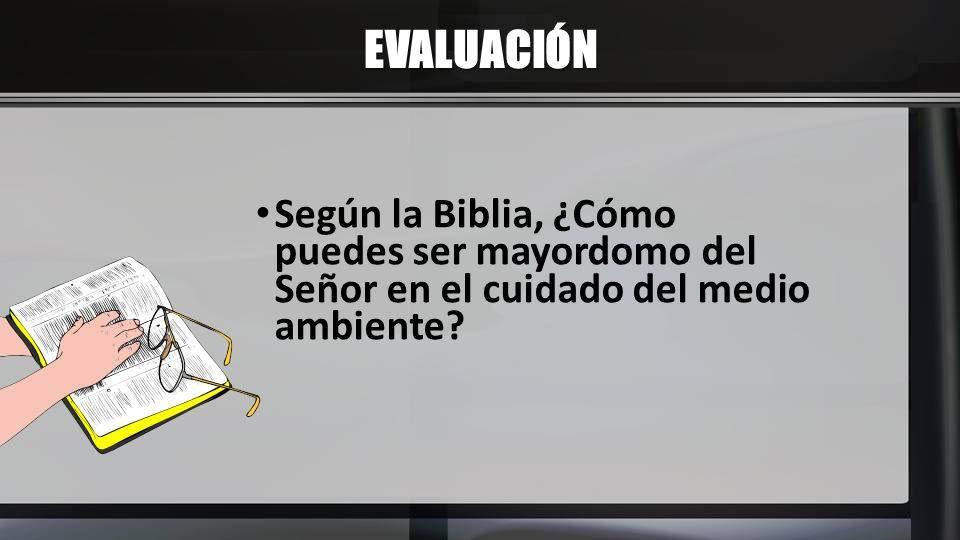 EVALUACIÓN Según la Biblia, ¿Cómo puedes ser mayordomo del Señor en el cuidado del medio ambiente