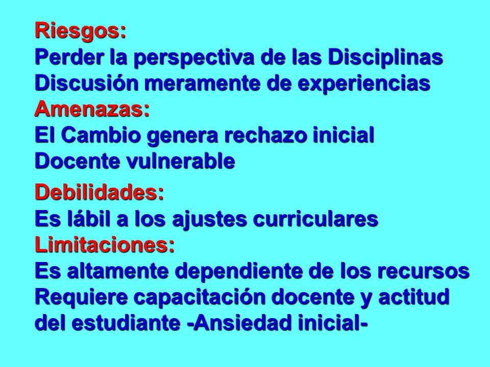 Riesgos: Perder la perspectiva de las Disciplinas. Discusión meramente de experiencias. Amenazas: