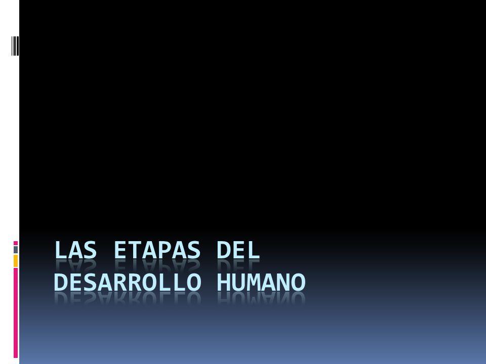 Las etapas del desarrollo humano