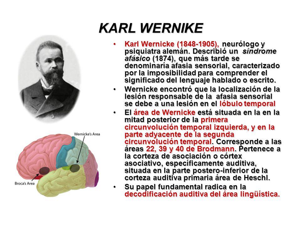 KARL WERNIKE