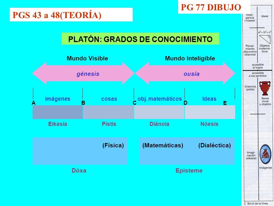PG 77 DIBUJO PGS 43 a 48(TEORÍA) PLATÓN: GRADOS DE CONOCIMIENTO
