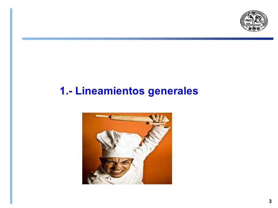 1.- Lineamientos generales