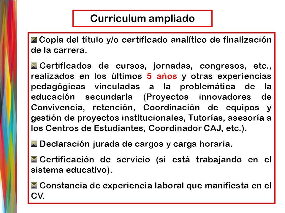 Curriculum ampliado Copia del título y/o certificado analítico de finalización de la carrera.