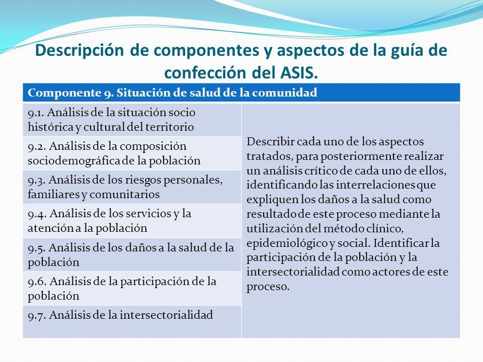 Descripción de componentes y aspectos de la guía de confección del ASIS.