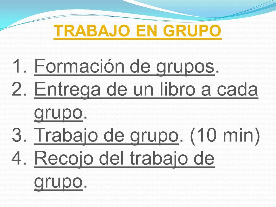 Entrega de un libro a cada grupo. Trabajo de grupo. (10 min)
