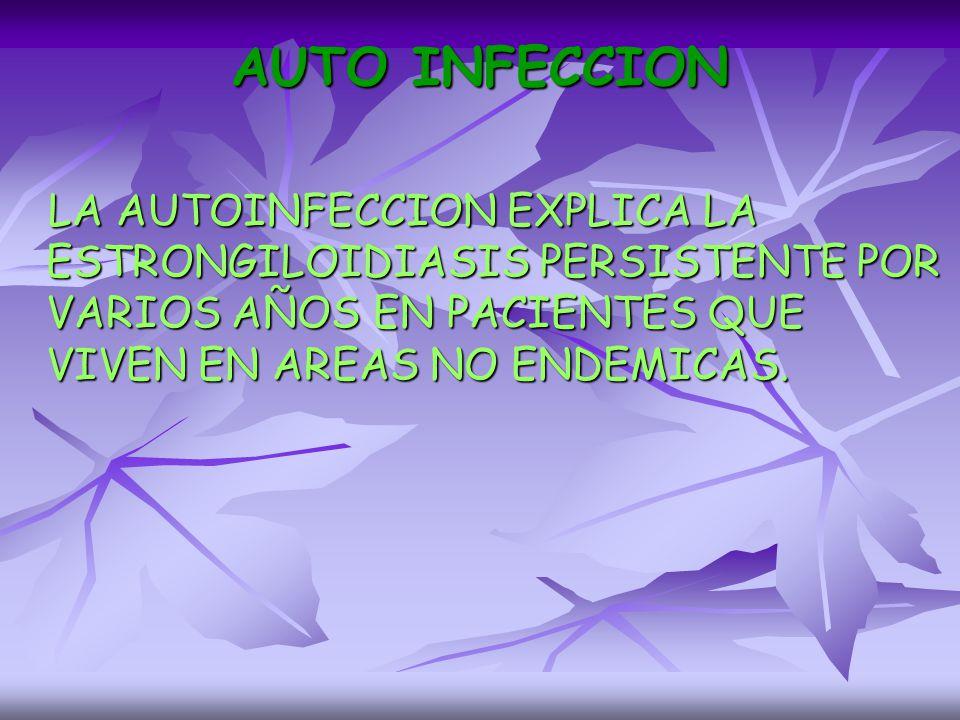 AUTO INFECCION LA AUTOINFECCION EXPLICA LA ESTRONGILOIDIASIS PERSISTENTE POR VARIOS AÑOS EN PACIENTES QUE VIVEN EN AREAS NO ENDEMICAS.
