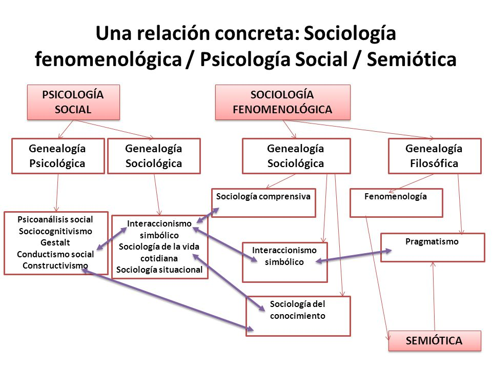 Una relación concreta: Sociología fenomenológica / Psicología Social / Semiótica