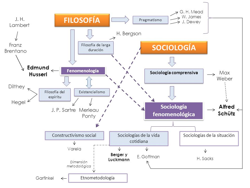 Sociología comprensiva Sociología fenomenológica