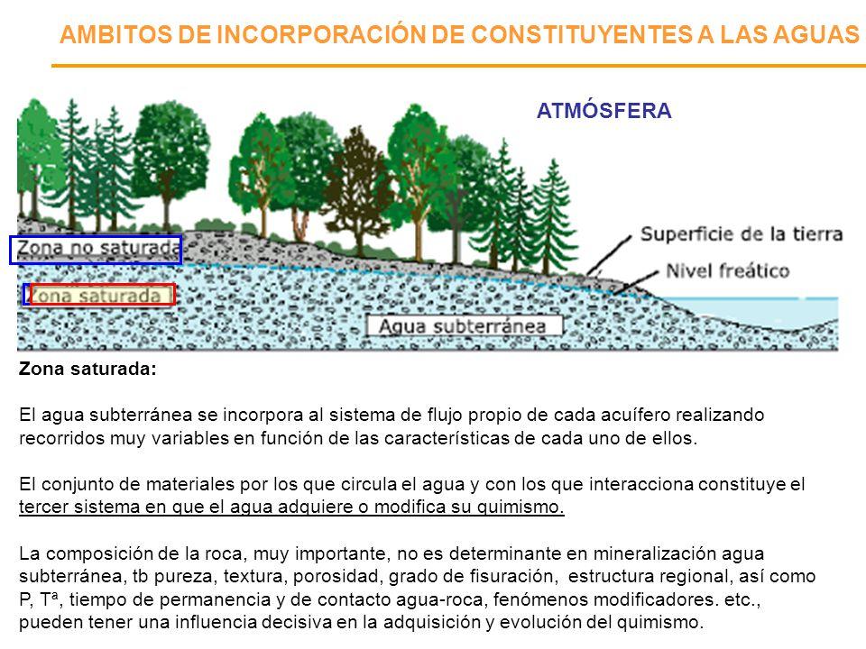 AMBITOS DE INCORPORACIÓN DE CONSTITUYENTES A LAS AGUAS