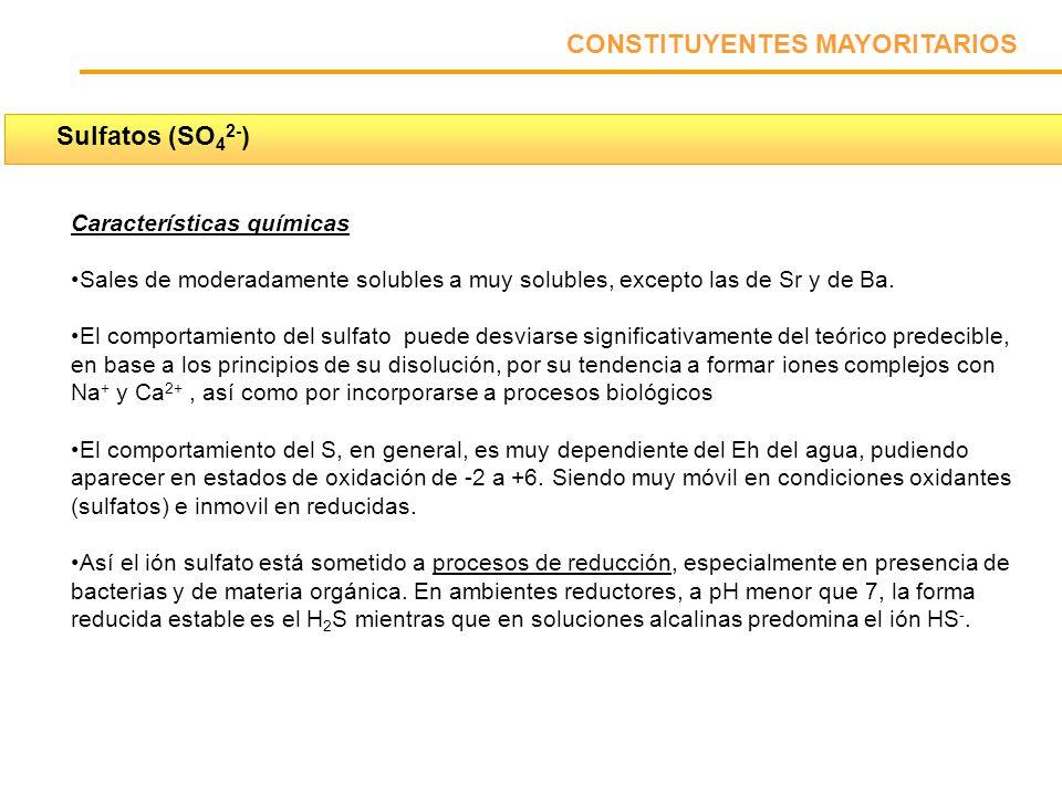 CONSTITUYENTES MAYORITARIOS