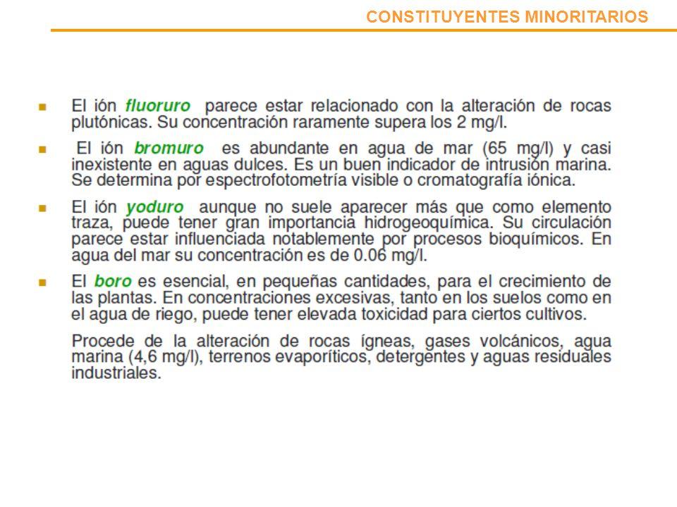 CONSTITUYENTES MINORITARIOS