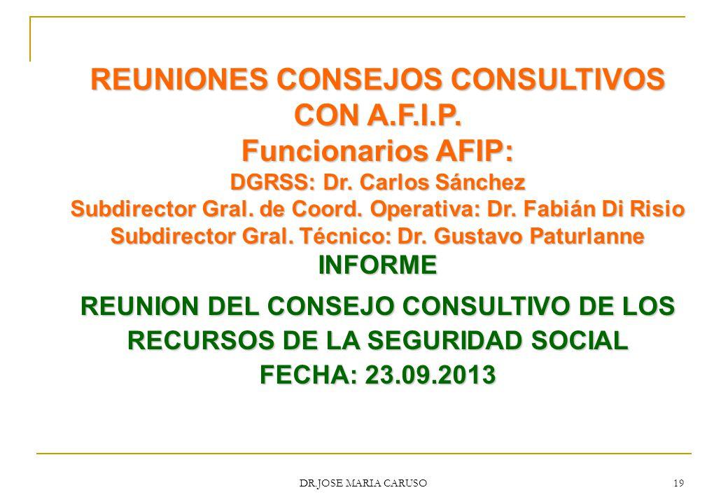 REUNIONES CONSEJOS CONSULTIVOS CON A.F.I.P. Funcionarios AFIP: