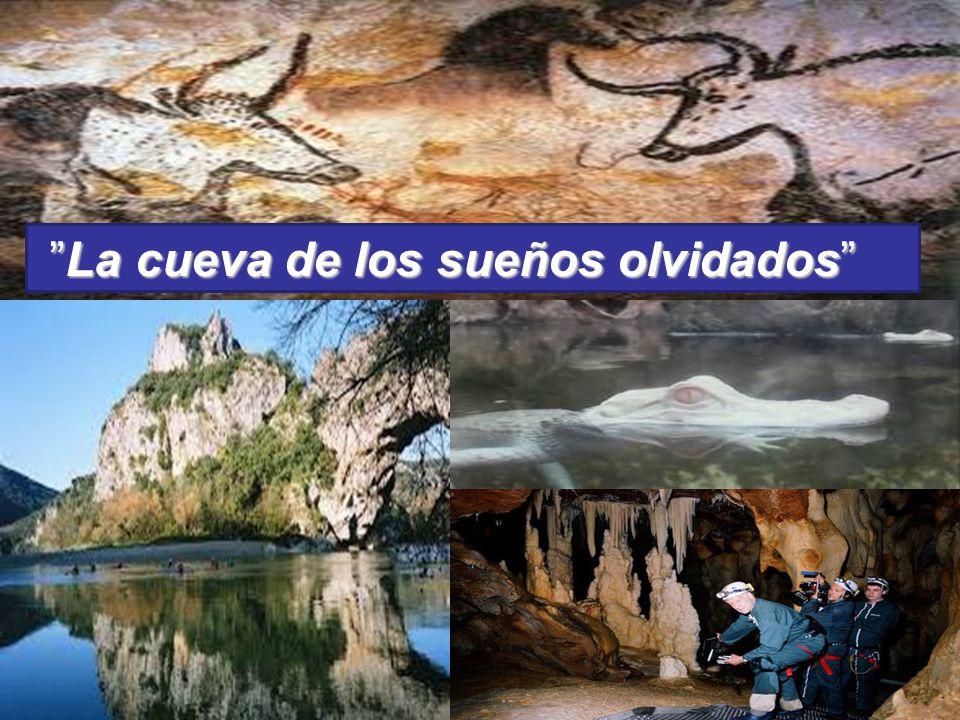 La cueva de los sueños olvidados