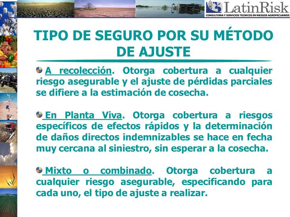 TIPO DE SEGURO POR SU MÉTODO DE AJUSTE