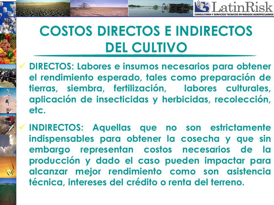 COSTOS DIRECTOS E INDIRECTOS DEL CULTIVO