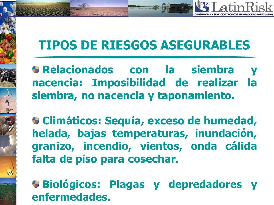 TIPOS DE RIESGOS ASEGURABLES