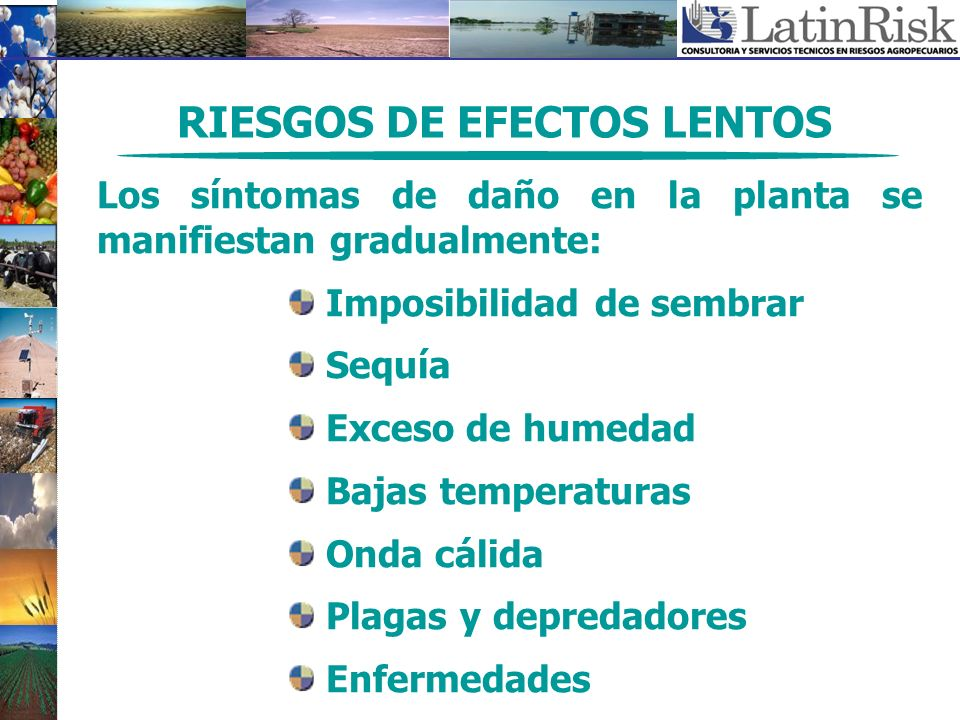 RIESGOS DE EFECTOS LENTOS