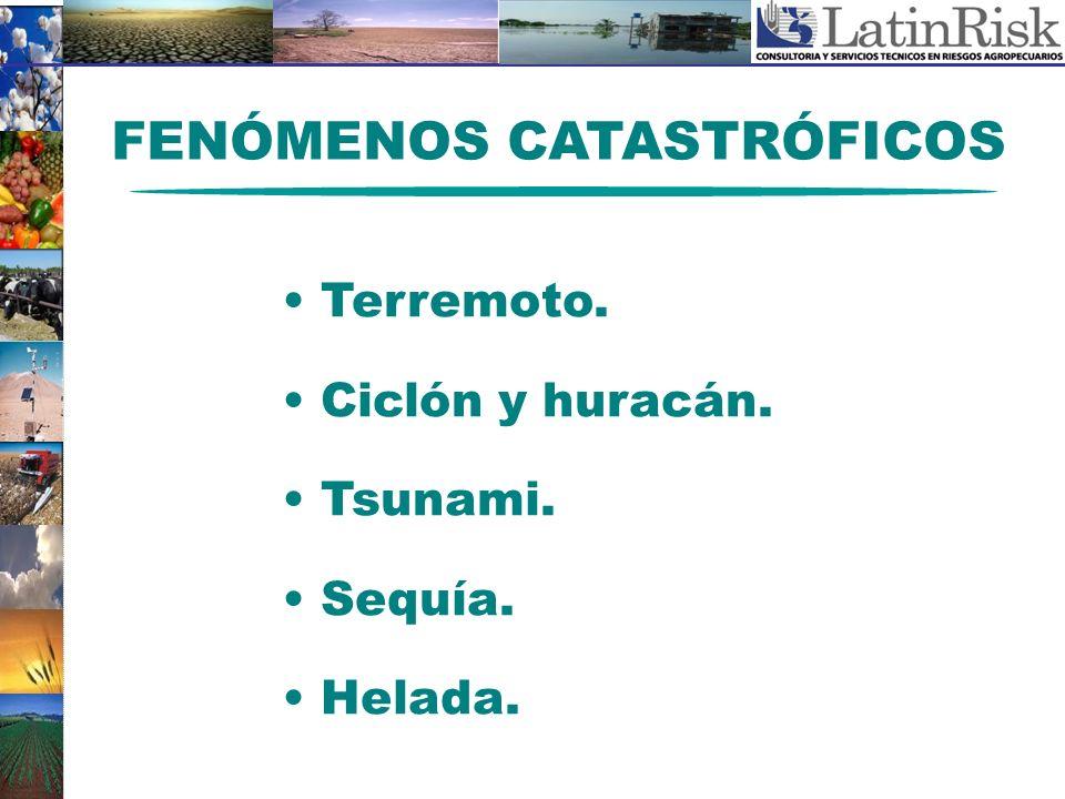 FENÓMENOS CATASTRÓFICOS