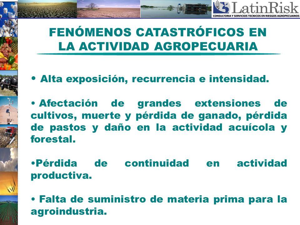 FENÓMENOS CATASTRÓFICOS EN LA ACTIVIDAD AGROPECUARIA