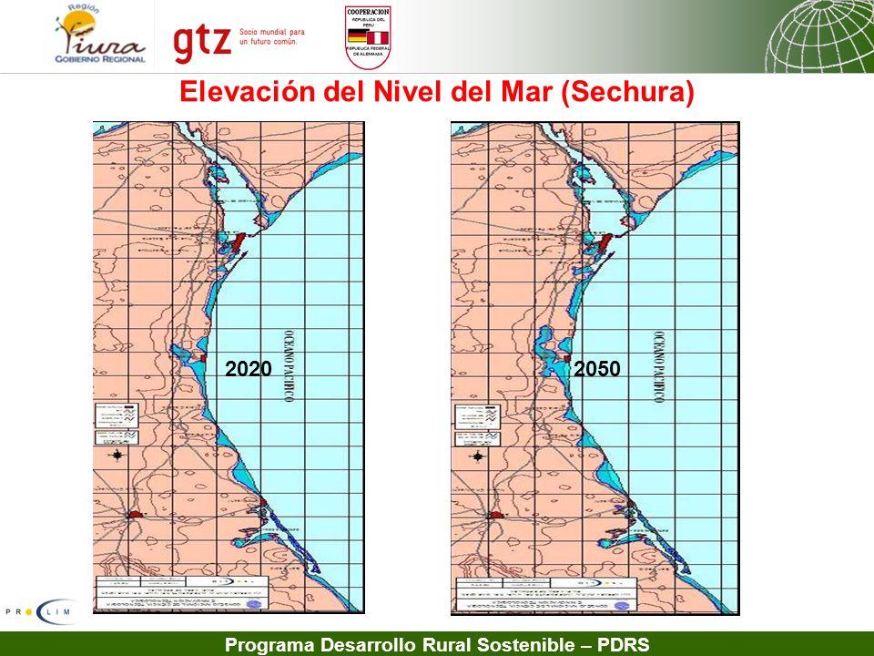 Elevación del Nivel del Mar (Sechura)