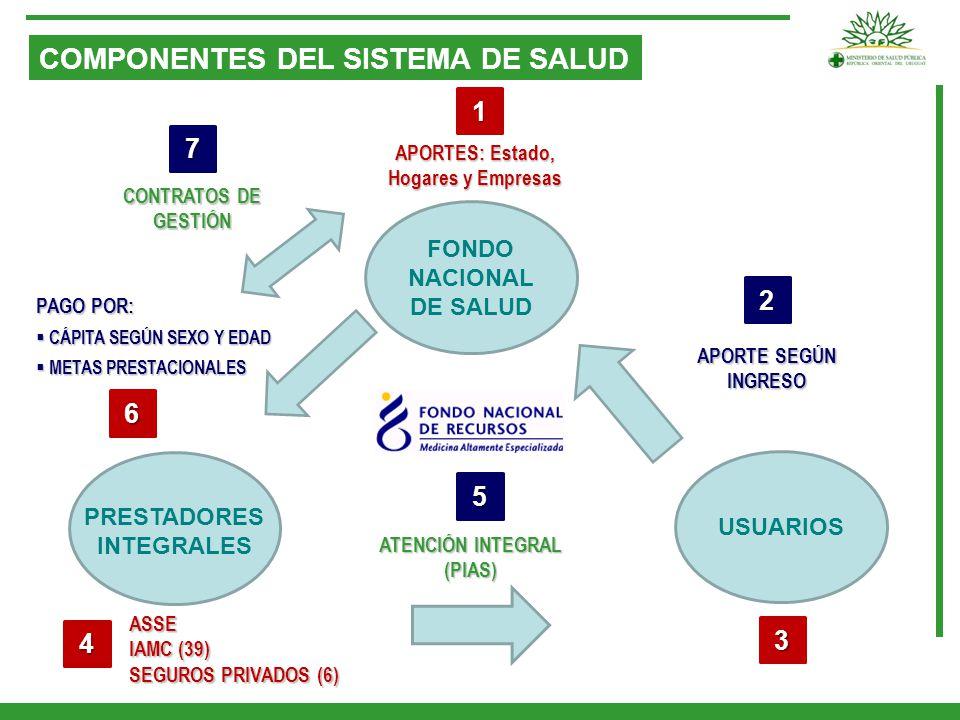 COMPONENTES DEL SISTEMA DE SALUD