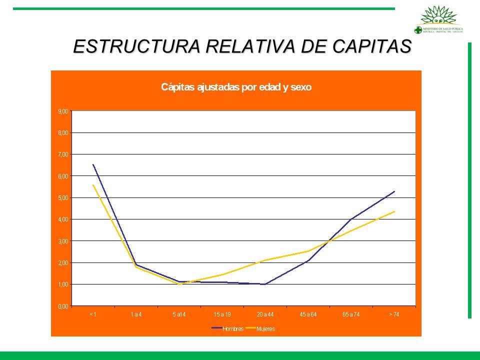 ESTRUCTURA RELATIVA DE CAPITAS