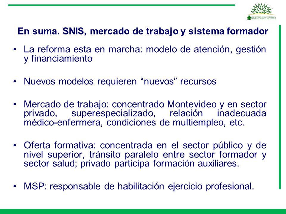 En suma. SNIS, mercado de trabajo y sistema formador