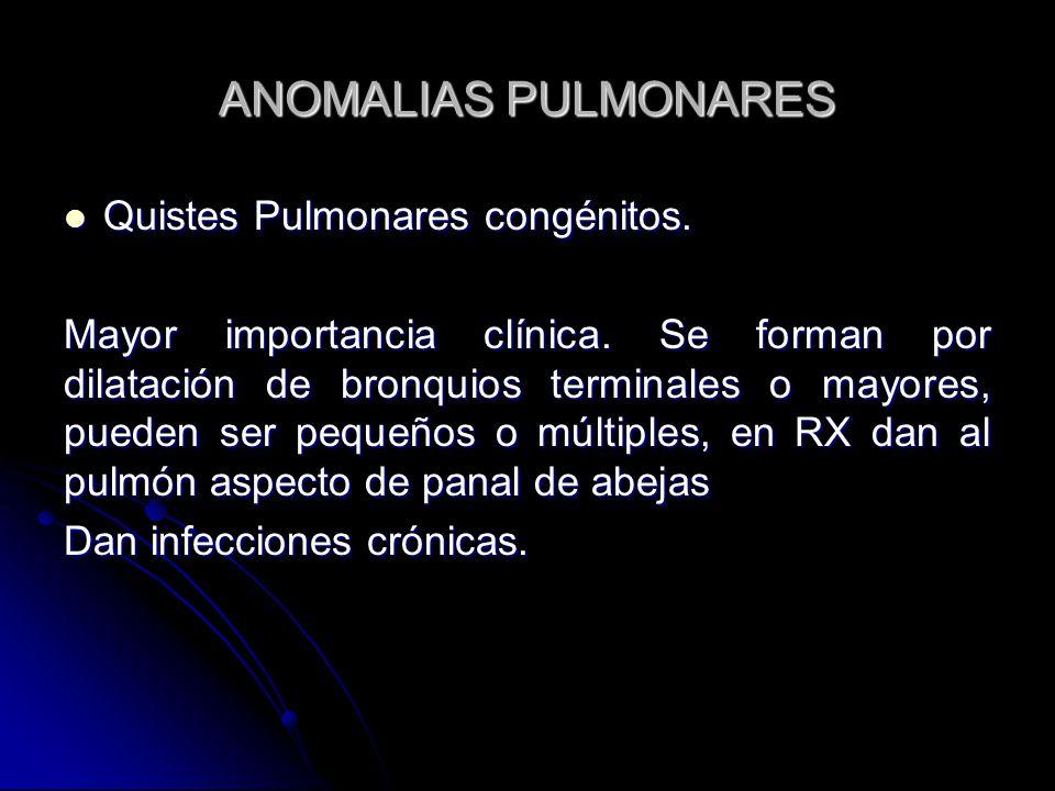 ANOMALIAS PULMONARES Quistes Pulmonares congénitos.