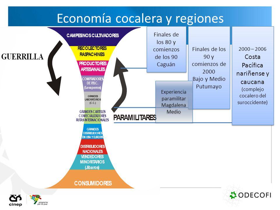 Economía cocalera y regiones