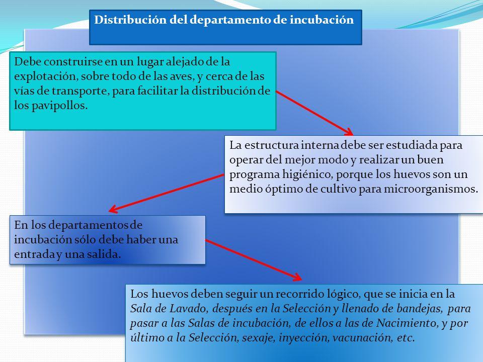 Distribución del departamento de incubación