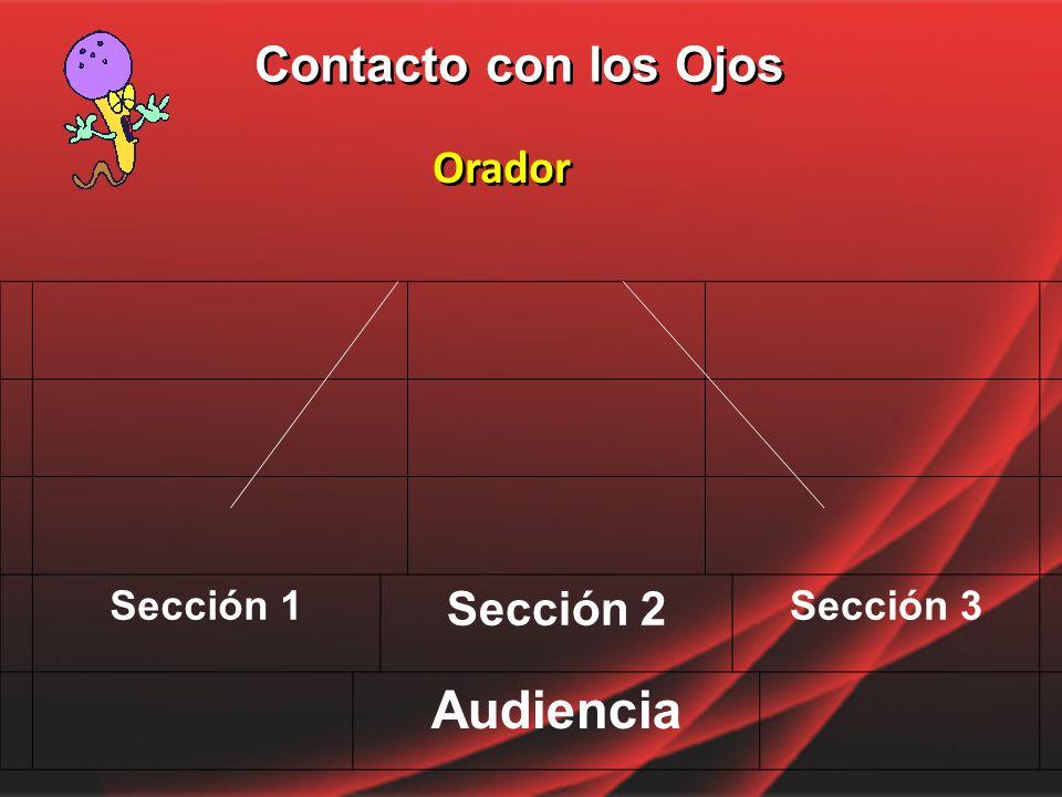 Contacto con los Ojos Orador Sección 1 Sección 2 Sección 3 Audiencia