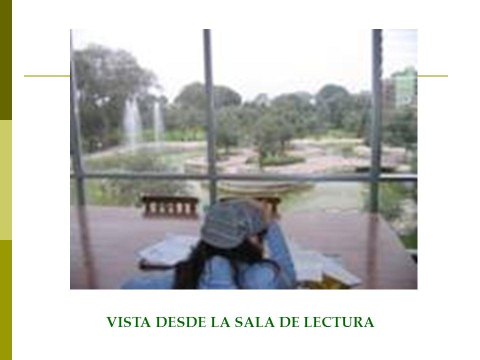 VISTA DESDE LA SALA DE LECTURA