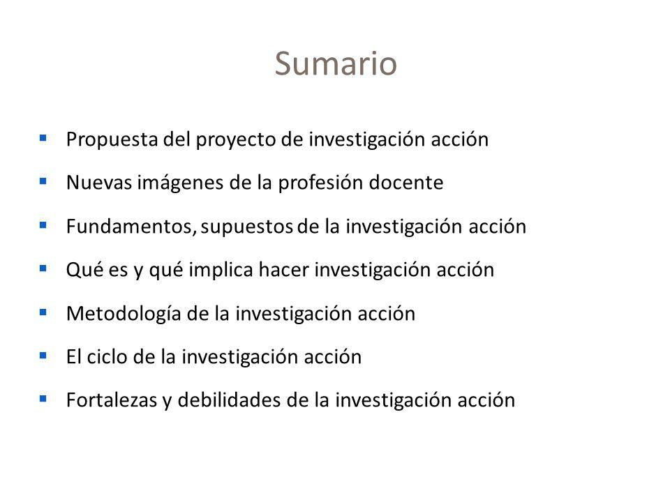 Sumario Propuesta del proyecto de investigación acción