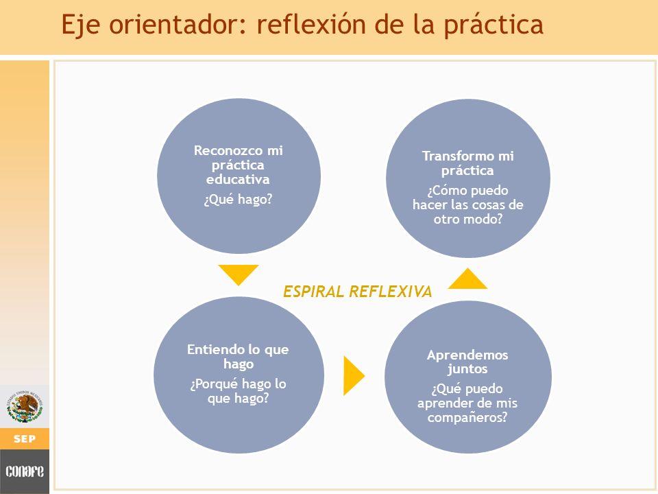 Eje orientador: reflexión de la práctica