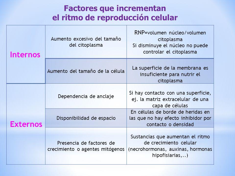 Factores que incrementan el ritmo de reproducción celular