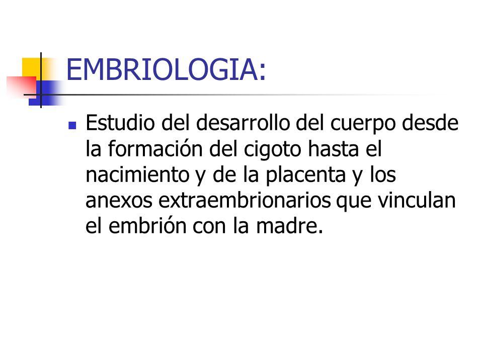 EMBRIOLOGIA: