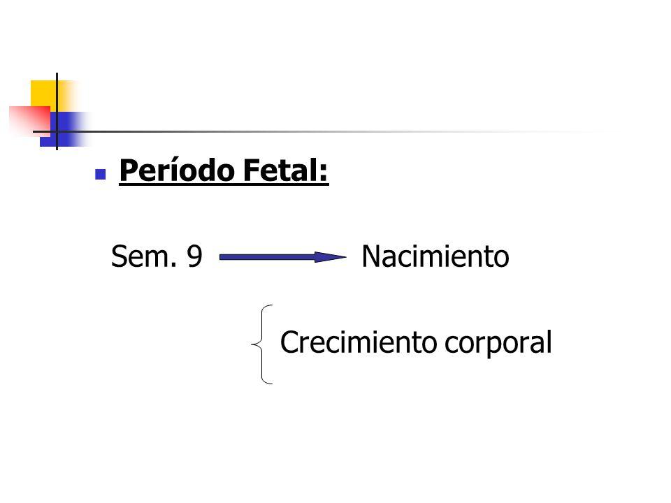 Período Fetal: Sem. 9 Nacimiento Crecimiento corporal