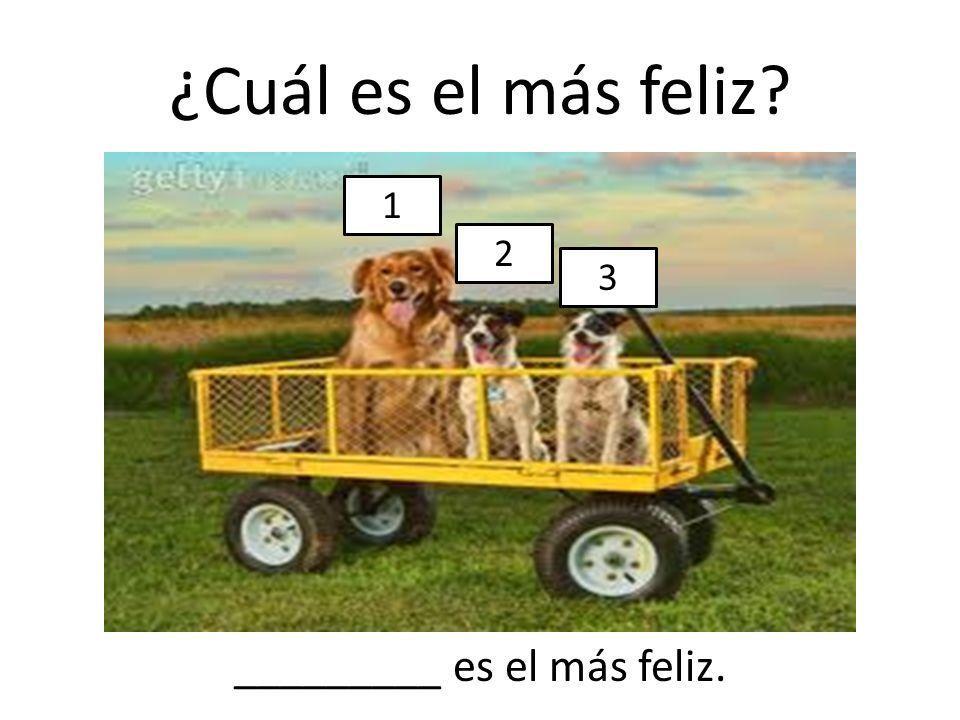 _________ es el más feliz.