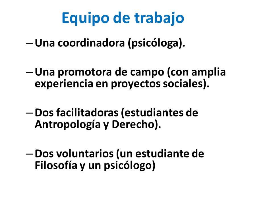 Equipo de trabajo Una coordinadora (psicóloga).