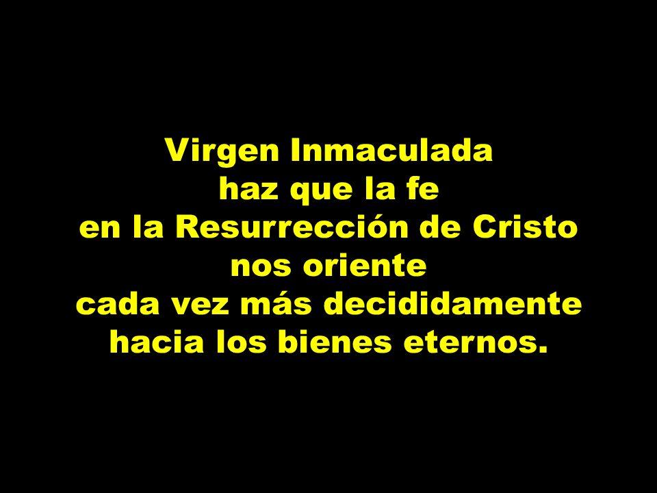 en la Resurrección de Cristo nos oriente