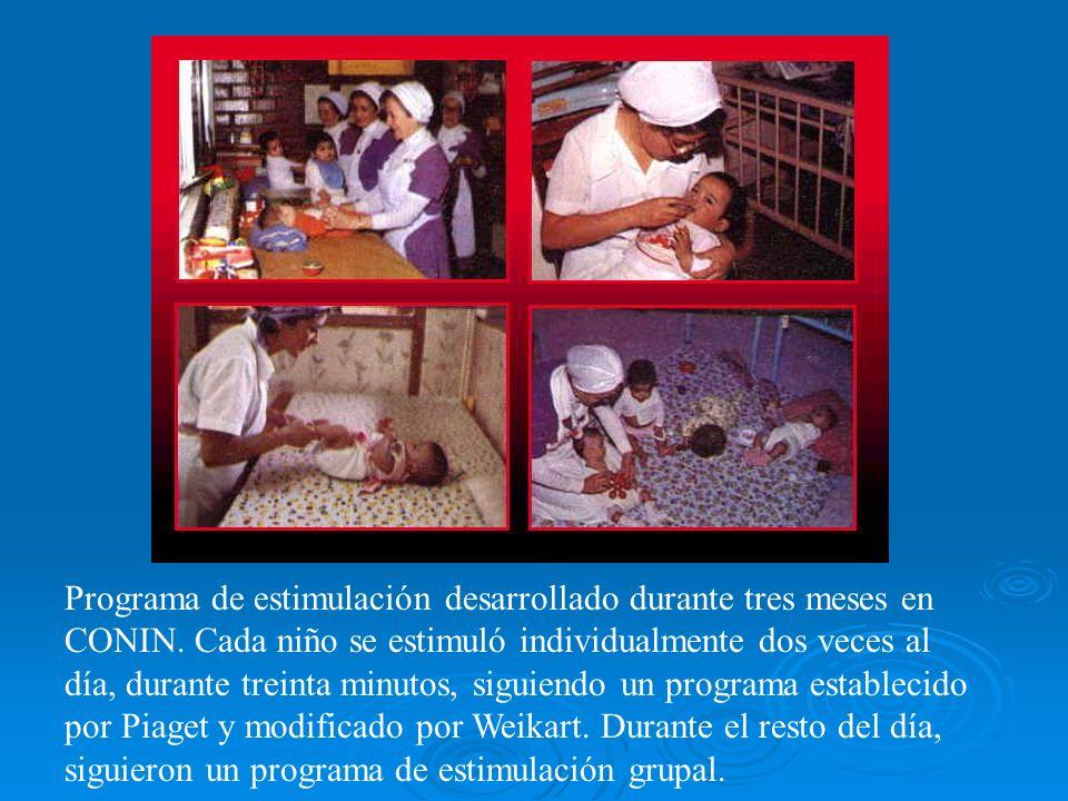Programa de estimulación desarrollado durante tres meses en CONIN