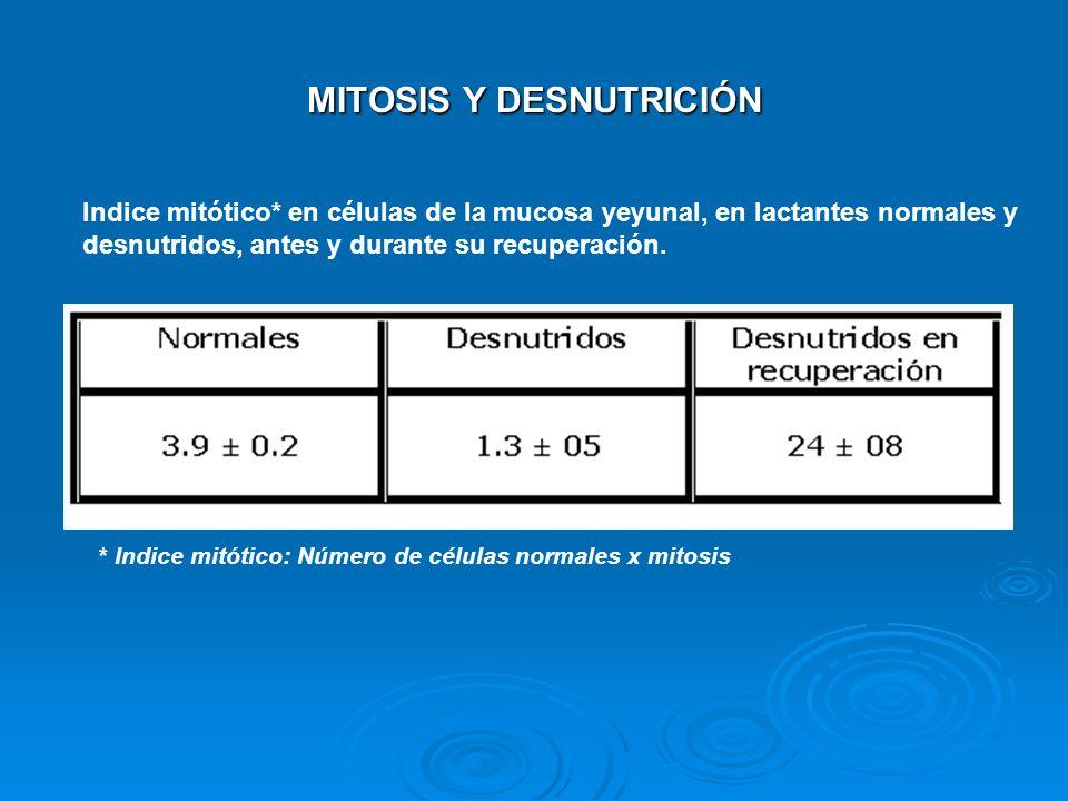 MITOSIS Y DESNUTRICIÓN