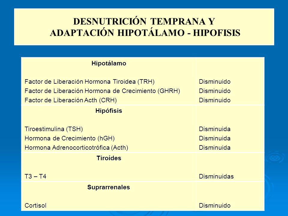 DESNUTRICIÓN TEMPRANA Y ADAPTACIÓN HIPOTÁLAMO - HIPOFISIS