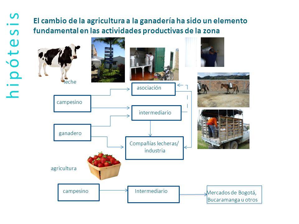 El cambio de la agricultura a la ganadería ha sido un elemento fundamental en las actividades productivas de la zona