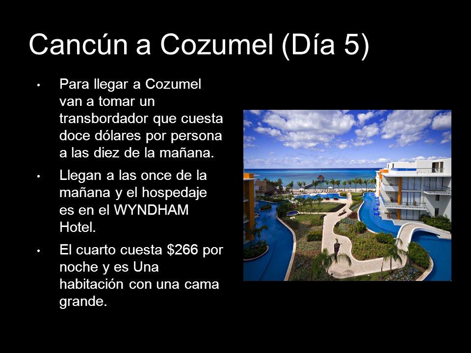 Cancún a Cozumel (Día 5) Para llegar a Cozumel van a tomar un transbordador que cuesta doce dólares por persona a las diez de la mañana.