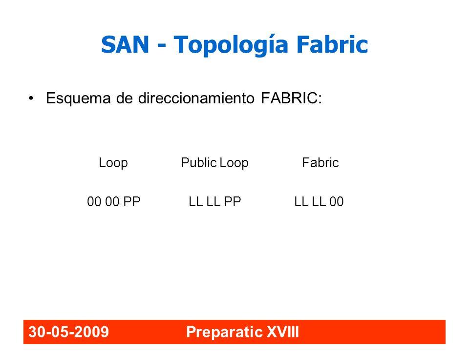 SAN - Topología Fabric Esquema de direccionamiento FABRIC: