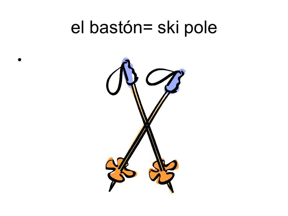 el bastón= ski pole