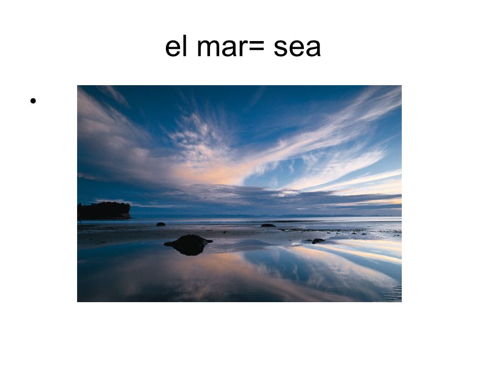 el mar= sea